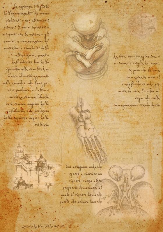 Leonardo da Vinci Atlas