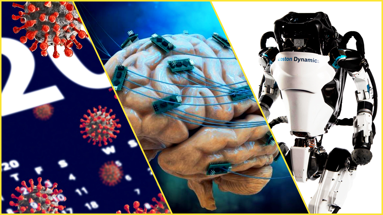 robot biologia immortalità umana